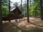 birdhouse-cabin-06.jpg