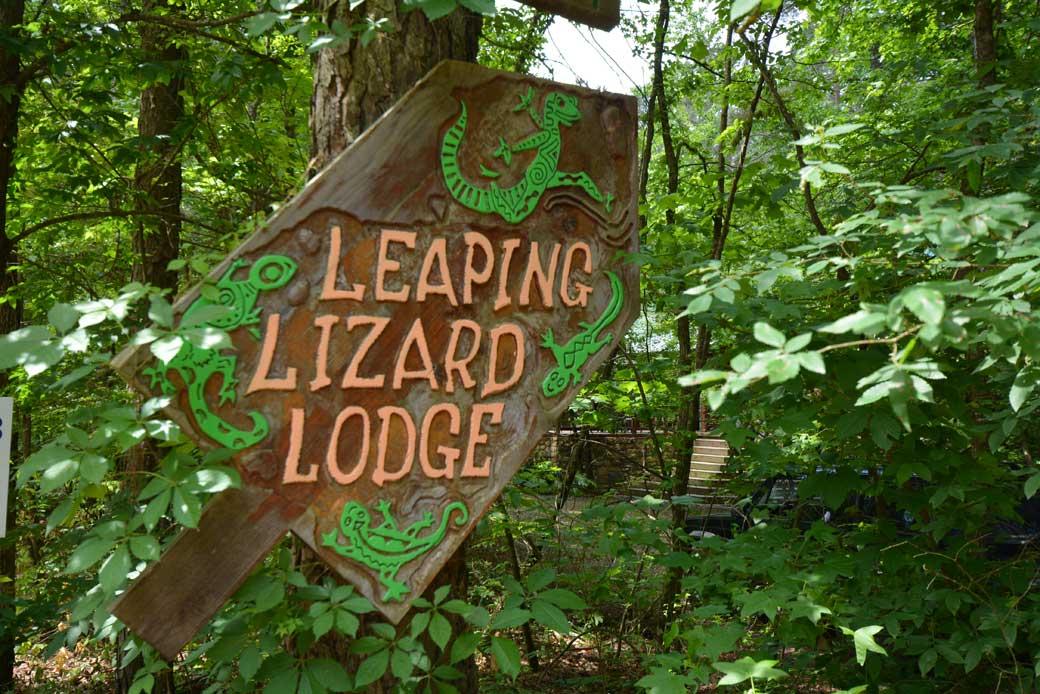 leapin-lizard-01